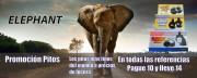promocion-Elephant